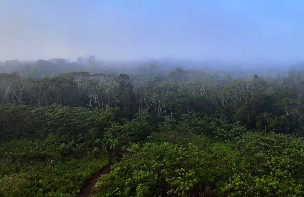 Guaviare, territorio ancestral Nükak